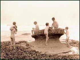 'Sea Urchins' by Frank Meadow Sutcliffe